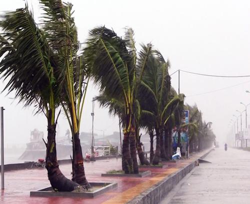 Bão Thần Sét đã suy yếu thành áp thấp nhiệt đới - 13