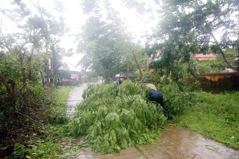 Bão Thần Sét đã suy yếu thành áp thấp nhiệt đới - 9