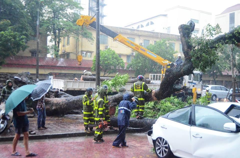 Bão Thần Sét đã suy yếu thành áp thấp nhiệt đới - 7
