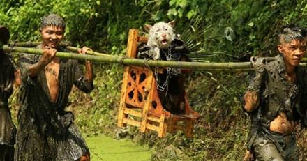 Lạ lẫm lễ hội người rước chó ngồi kiệu như ông hoàng - 1