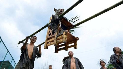 Lạ lẫm lễ hội người rước chó ngồi kiệu như ông hoàng - 4