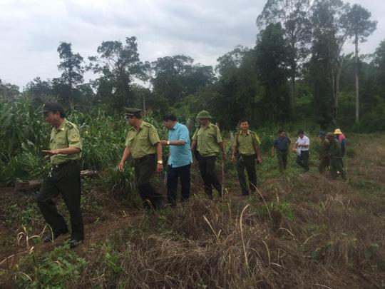 Đàn voi rừng 20 con bất ngờ kéo về tàn phá buôn làng - 2