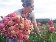 Cô gái trẻ chứng minh bán hoa là nghề tuyệt vời nhất