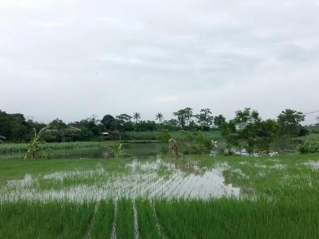 Nhiều nơi ở Nghệ An, Thanh Hóa bị cô lập sau bão số 3 - 6