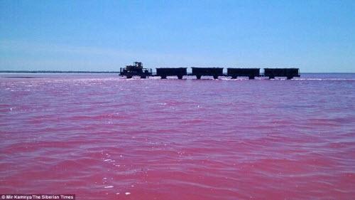 Hồ nước chuyển màu hồng bí ẩn ở Siberia - 5