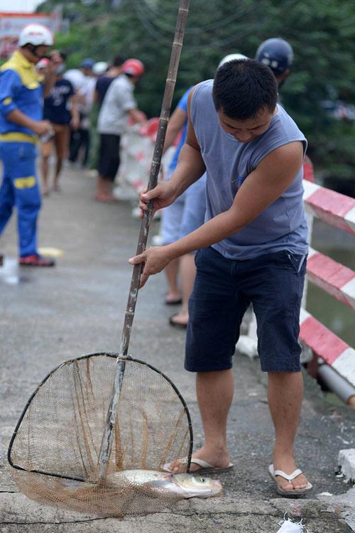 Dân Thủ đô đổ xô đi bắt cá sau bão Thần Sét - 5