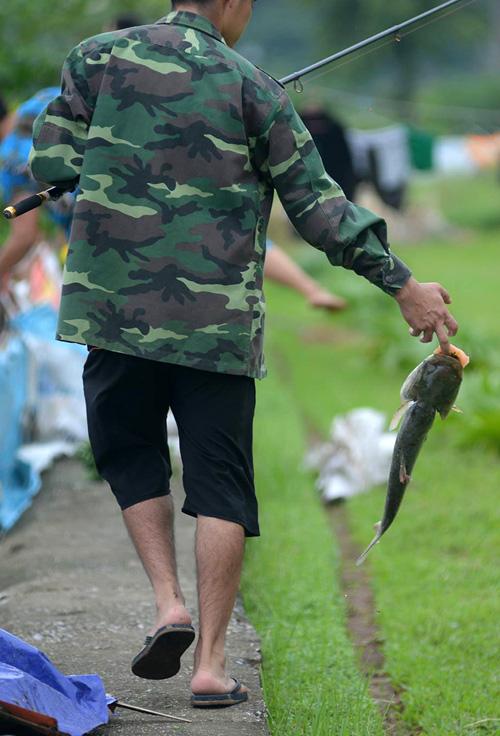 Dân Thủ đô đổ xô đi bắt cá sau bão Thần Sét - 8