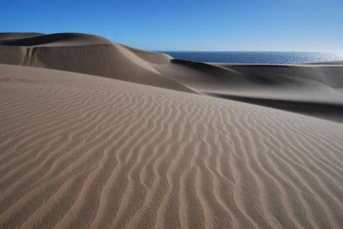 """Nơi sa mạc Namib """"hẹn hò"""" với đại dương - 8"""