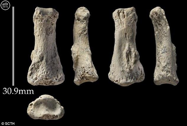 """Tìm thấy xương """"ngón tay thối"""" 9 vạn tuổi ở Ả Rập Saudi - 1"""