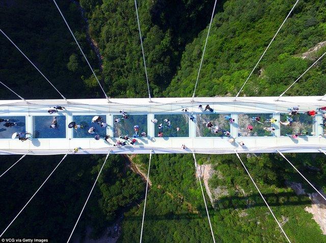 Khai trương cầu kính cao và dài nhất thế giới - 3