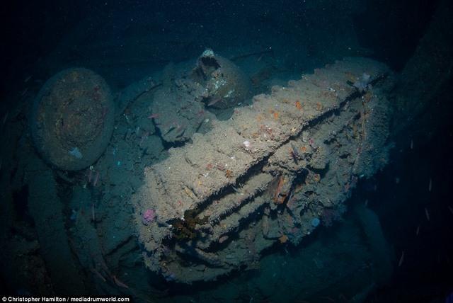 Khám phá tàu chiến Mỹ 13.000 tấn chìm sâu dưới biển - 9