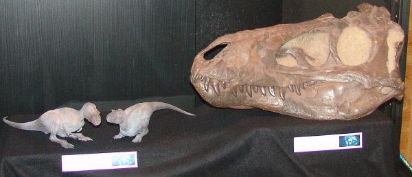 Tranh cãi về loài khủng long chưa từng tồn tại - 2
