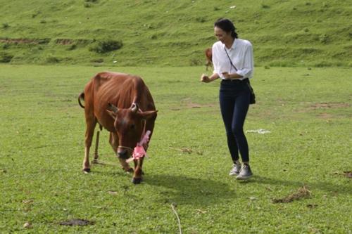 """Hoa hậu VN: """"Bản sao Nguyễn Thị Huyền"""" lội bùn, cuốc đất - 4"""