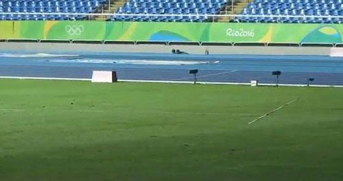 """Usain Bolt: Chạy vô địch, ném lao cũng """"khủng"""" - 2"""