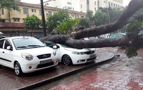 Thiết bị Trung Quốc ảnh hưởng tới dự báo bão? - 1