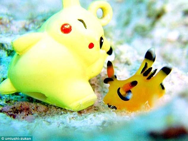 Sinh vật giống Pokémon gây sốt ở Nhật Bản - 1