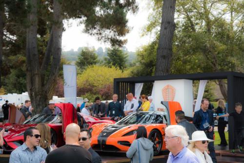 Lộ diện chủ nhân Koenigsegg Agera XS giá hàng chục tỷ đồng - 8