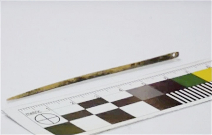 Tìm thấy kim khâu tự chế 50.000 tuổi vẫn dùng tốt - 2