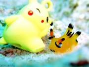 Phi thường - kỳ quặc - Sinh vật giống Pokémon gây sốt ở Nhật Bản