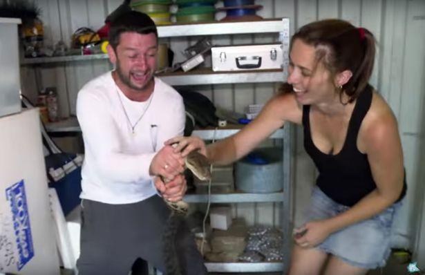 Video: Bị trăn khổng lồ siết cổ trên truyền hình Úc - 2