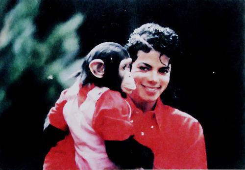 Bật mí 54 sở thích quái dị của Michael Jackson - 2