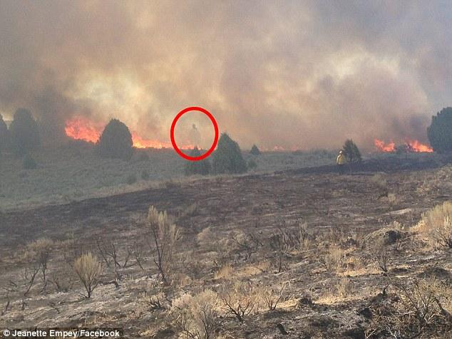 Bóng người kì lạ bay trên lửa khi hỏa hoạn ở Mỹ - 1