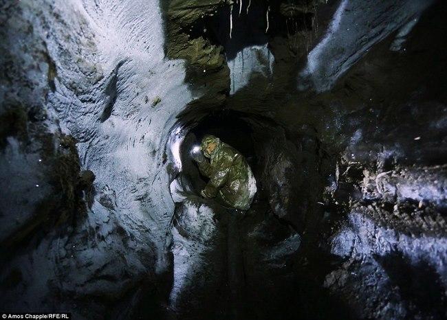 Thâm nhập thế giới ngầm đào ngà voi ma mút đi bán ở Nga - 6