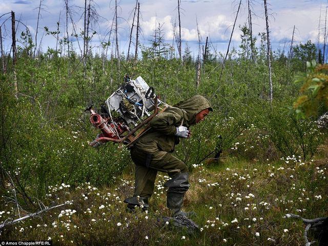 Thâm nhập thế giới ngầm đào ngà voi ma mút đi bán ở Nga - 4