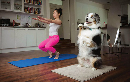 Học chó mèo tập yoga thư giãn cuối tuần nào! - 6