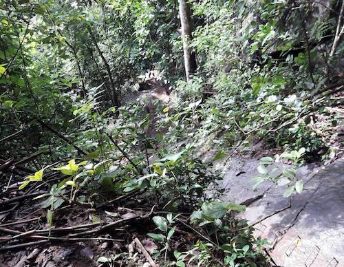Phát hiện xác chết bên tiền âm phủ trên núi Bà Đen - 1