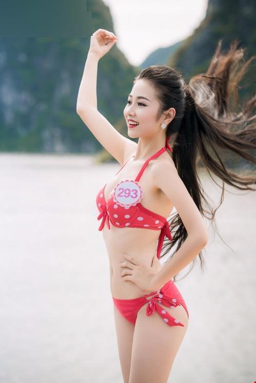 Nhiếp ảnh gia dự đoán top 10 Hoa hậu VN 2016 - 3