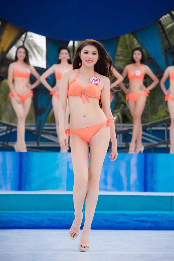 """Nét """"Tây"""" khó rời mắt của nữ du học sinh thi Hoa hậu VN - 1"""
