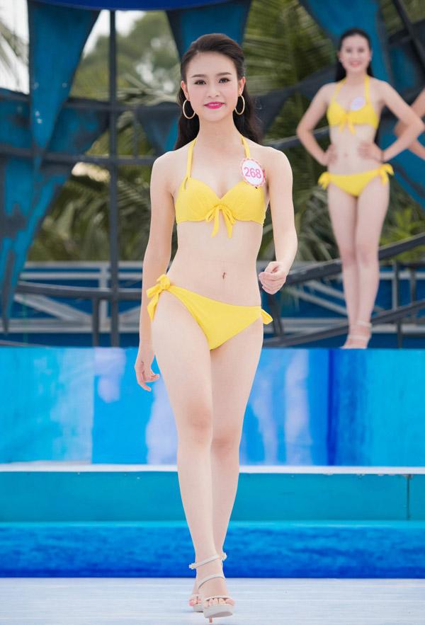 Bí mật thân hình gợi cảm của 3 mỹ nữ thi Hoa hậu VN - 2