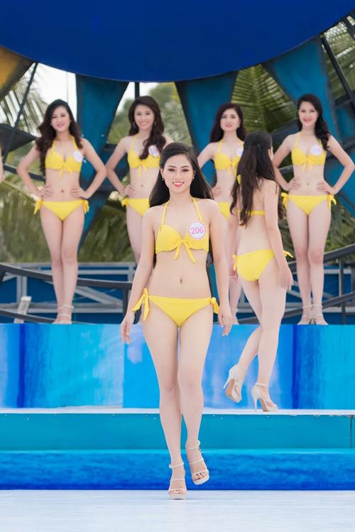 Bí mật thân hình gợi cảm của 3 mỹ nữ thi Hoa hậu VN - 6