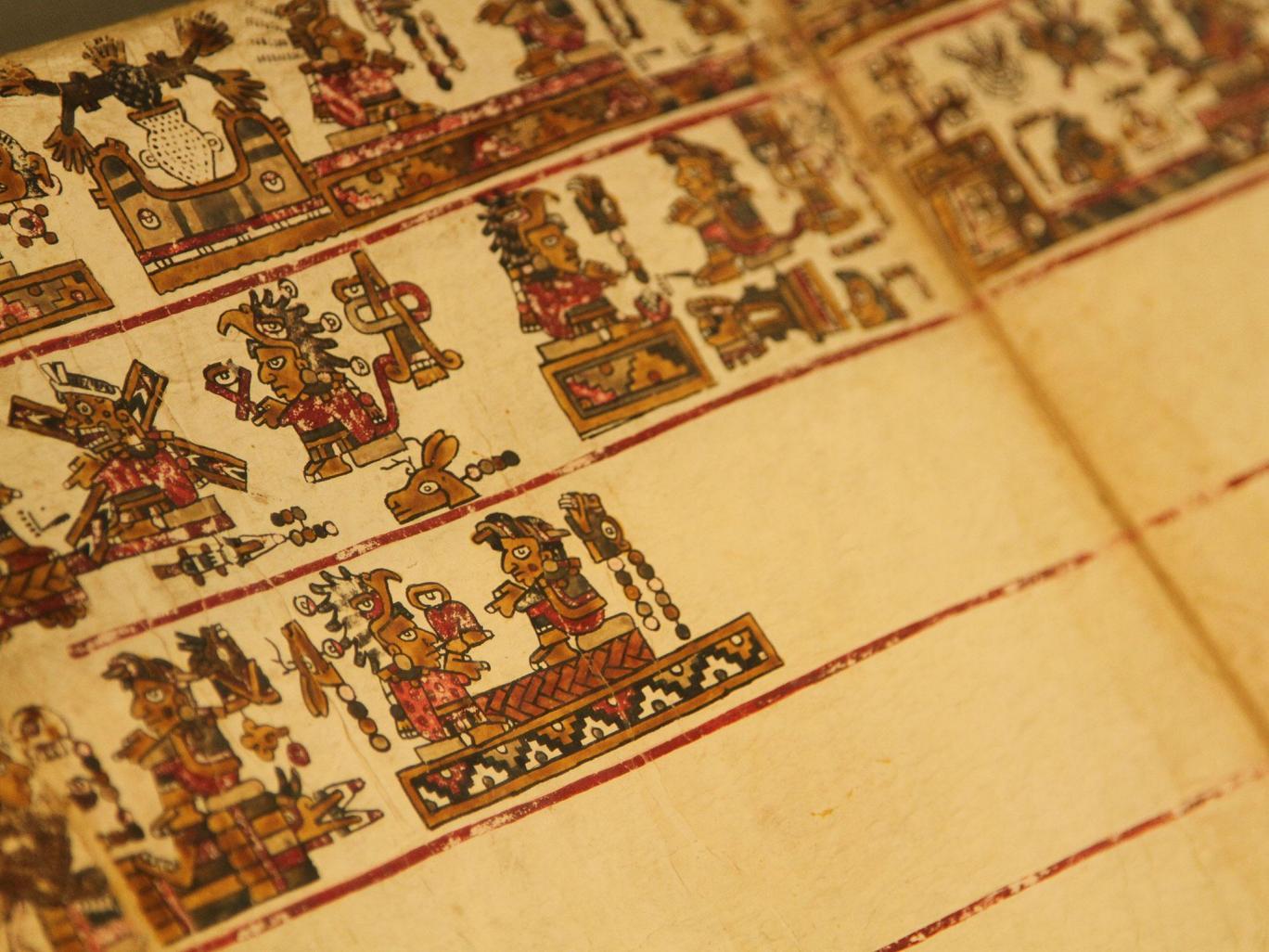 Phát hiện hình vẽ kỳ bí trong sách cổ 500 tuổi - 3