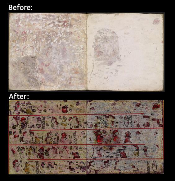 Phát hiện hình vẽ kỳ bí trong sách cổ 500 tuổi - 1