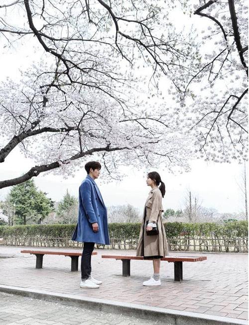 Phim của bạn gái Lee Min Ho khiến fan khóc hết nước mắt - 1