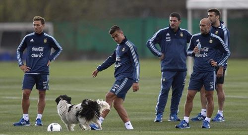 ĐT Argentina hội quân, Messi chấn thương - 1