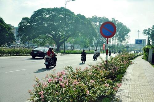 Thông xe tuyến Tân Sơn Nhất - Bình Lợi - Vành đai ngoài - 1