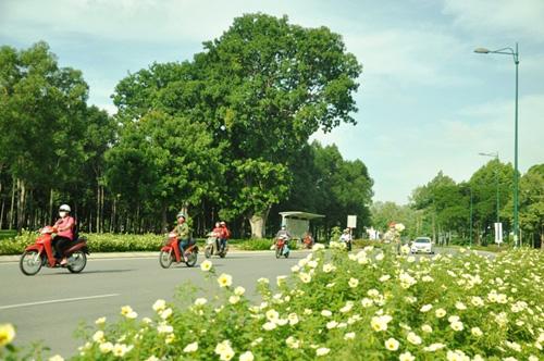 Thông xe tuyến Tân Sơn Nhất - Bình Lợi - Vành đai ngoài - 5
