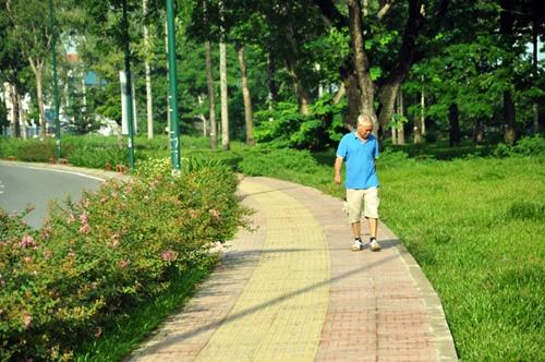 Thông xe tuyến Tân Sơn Nhất - Bình Lợi - Vành đai ngoài - 4