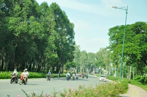 Thông xe tuyến Tân Sơn Nhất - Bình Lợi - Vành đai ngoài - 7