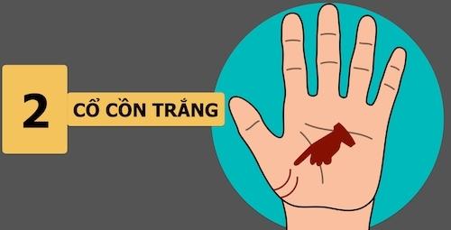 9 dấu hiệu đặc biệt trong bàn tay người thành công - 2