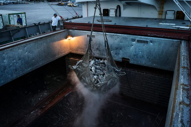 Nguồn tài nguyên lớn nhất ở Biển Đông sắp biến mất - 1
