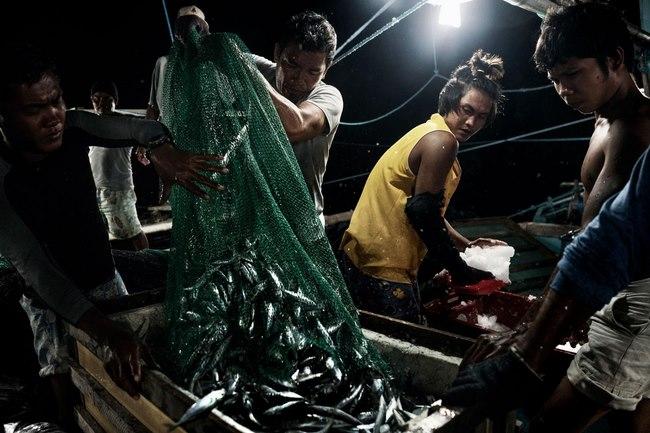 Nguồn tài nguyên lớn nhất ở Biển Đông sắp biến mất - 3