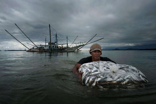 Nguồn tài nguyên lớn nhất ở Biển Đông sắp biến mất - 7