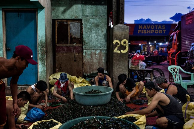 Nguồn tài nguyên lớn nhất ở Biển Đông sắp biến mất - 13