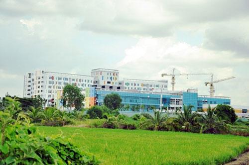 Kỳ lạ: Bệnh viện xây gần xong nhưng chưa có đường - 2