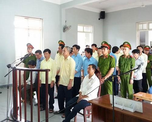 7 cán bộ kiểm lâm nhận hối lộ vụ phá rừng lớn ở Đà Nẵng lĩnh án - 1