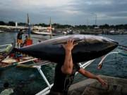 Nguồn tài nguyên lớn nhất ở Biển Đông sắp biến mất